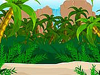Escape Survivor Island