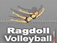 Ragdoll Volleyball